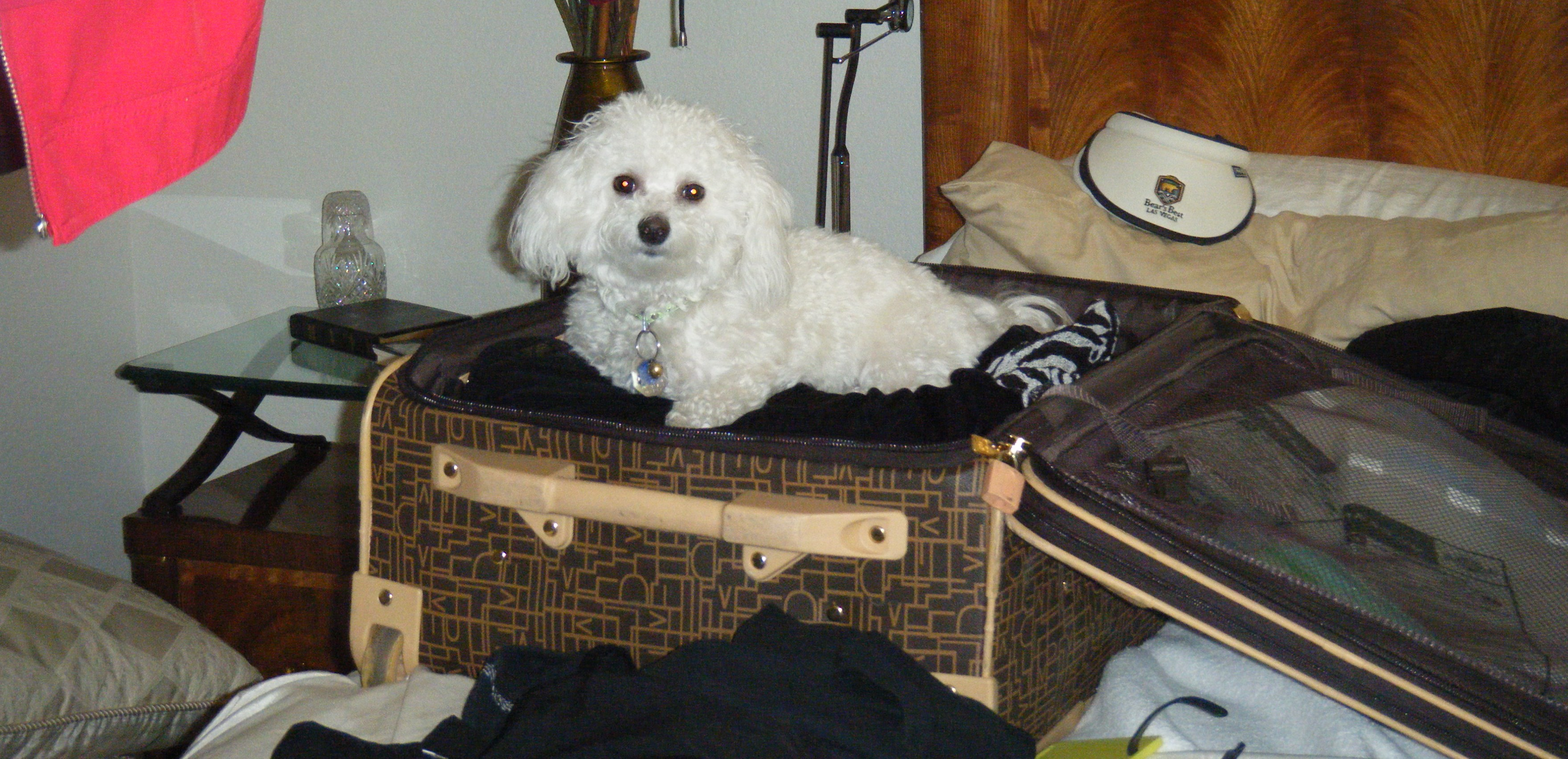 Sash in suitcase